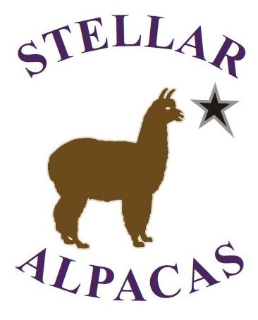 Stellar_Alpacas.JPG