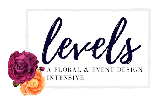 Level+Logo.jpg