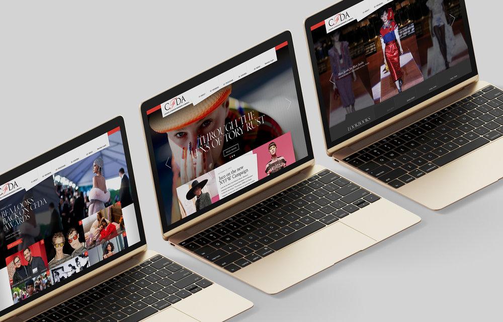 CFDA Website