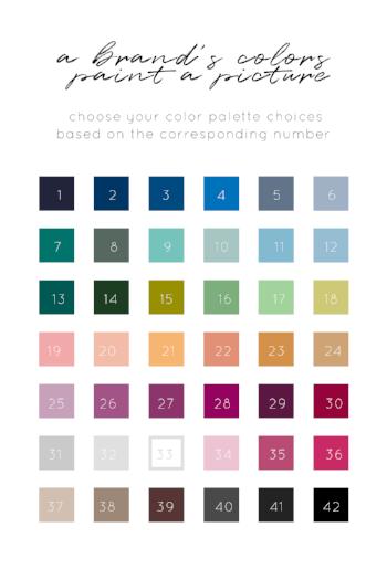 Color Palette Choices.png