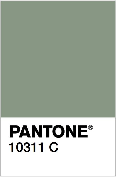 Pantone 10311 C.png