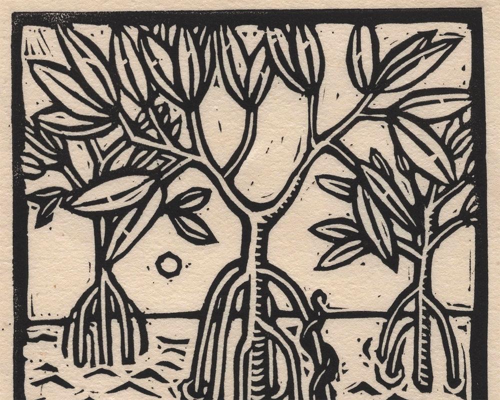 magrove small detail 1.jpg