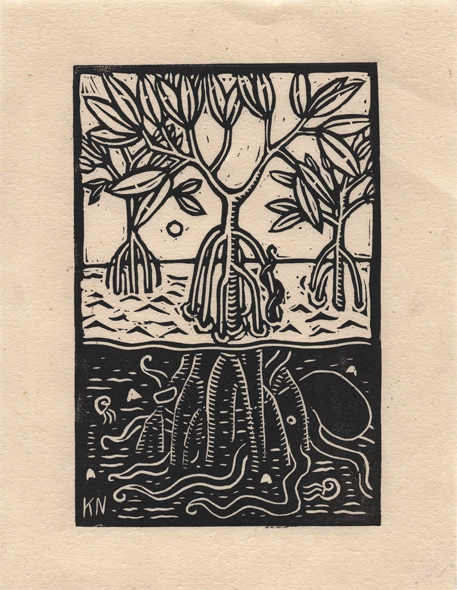 Mangrove small