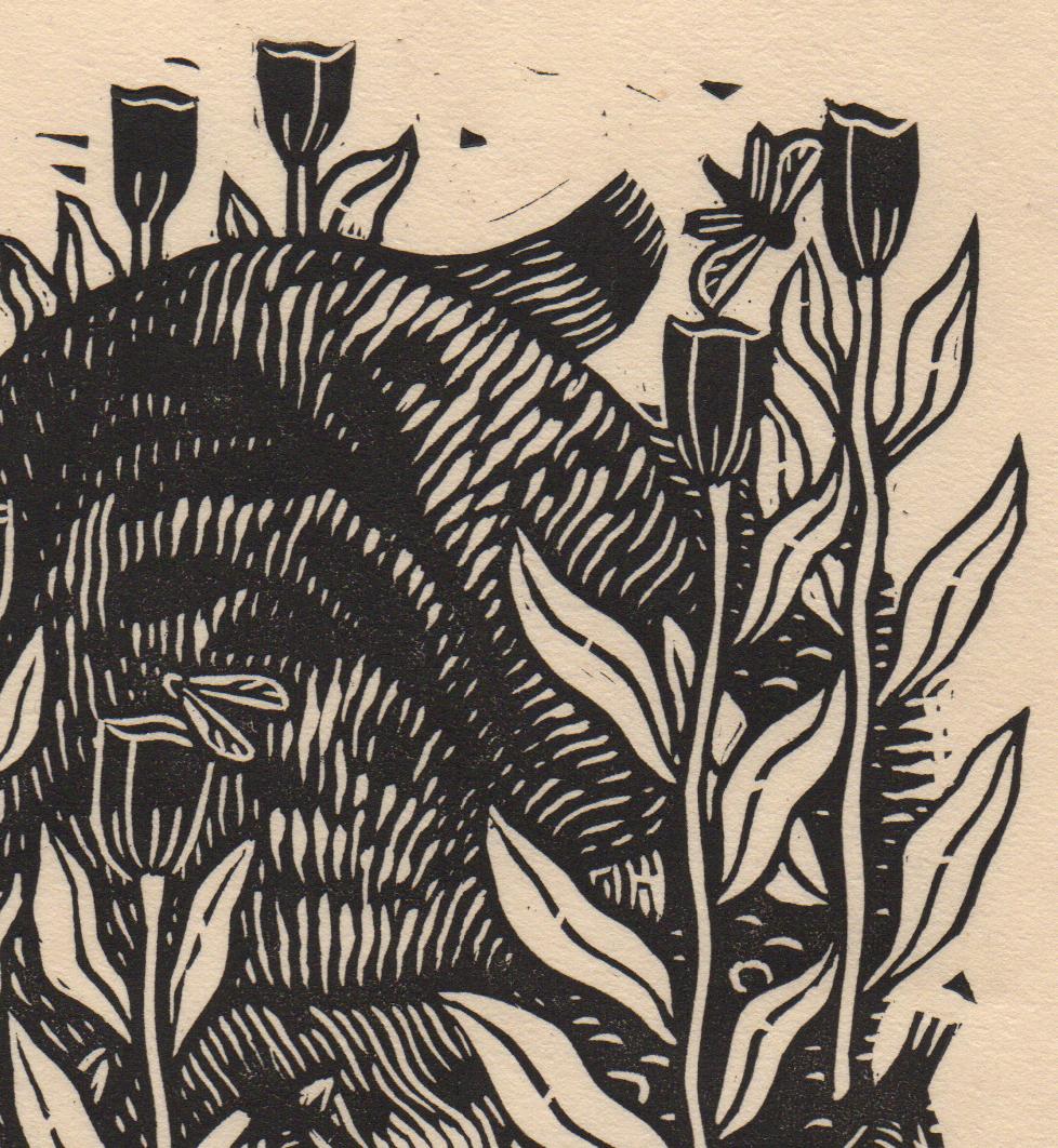 bobcat detail 2.jpg