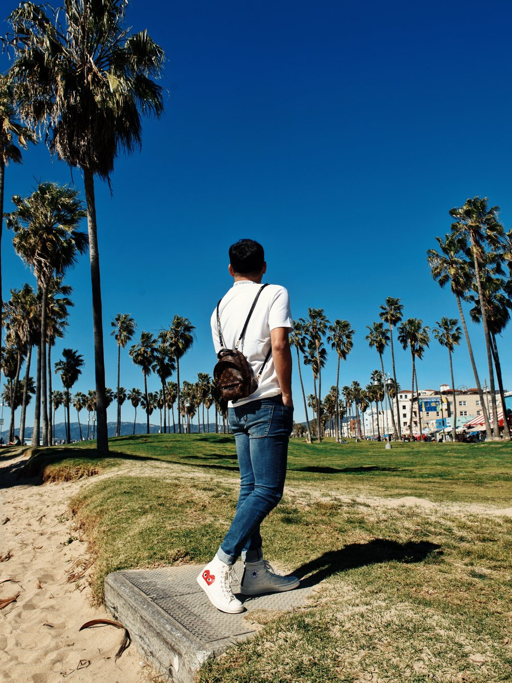 lost Angeles Venice beach