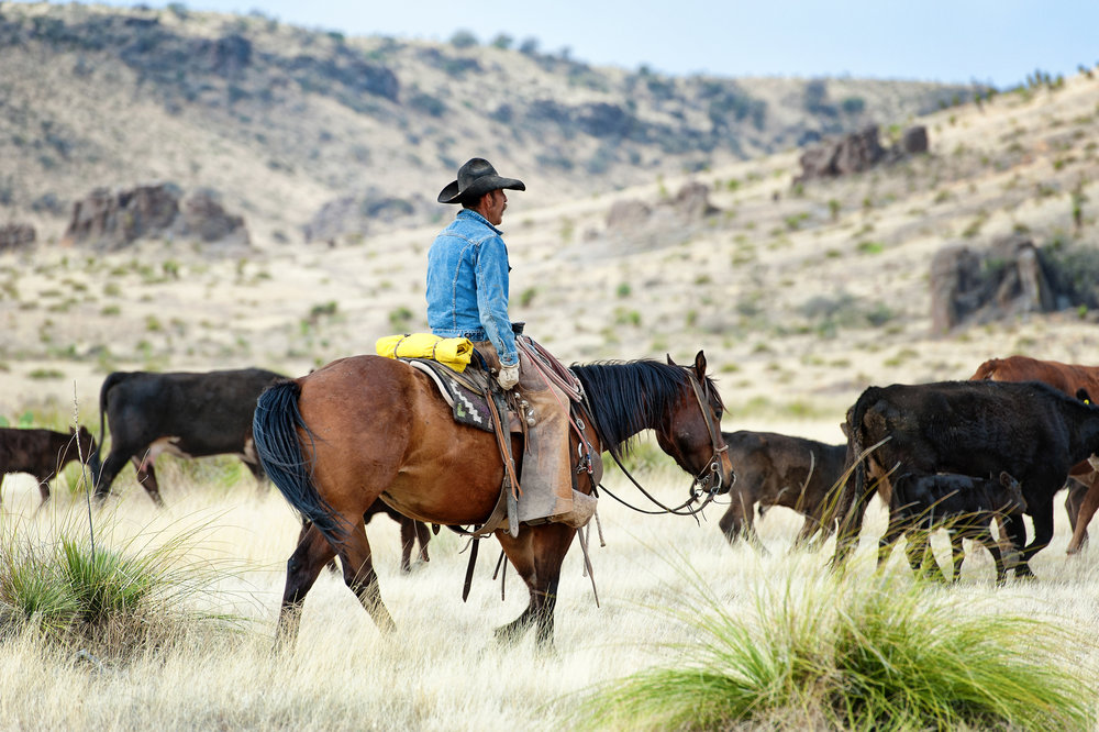 Gearhart Ranch Story  (6).jpg