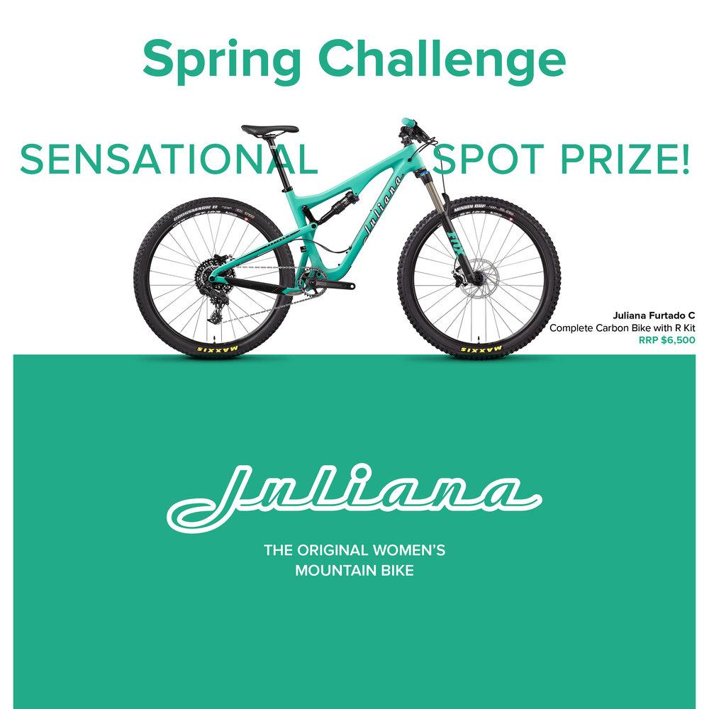 Spring Challenge ad square V1.jpg