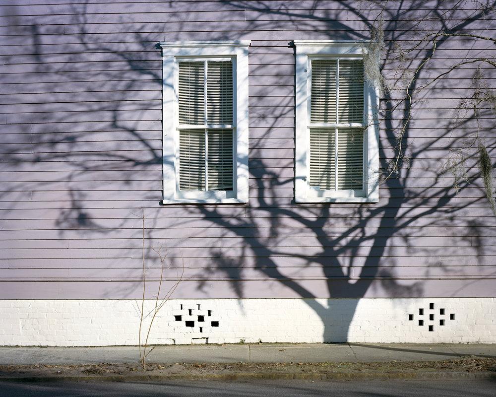 tree shadow on house.jpg