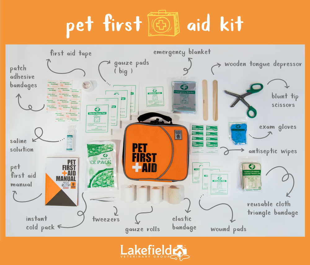 First-Aid-Kit---2.png