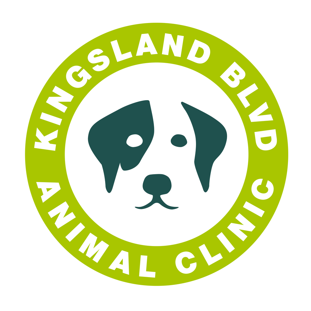 Kingsland Blvd Rebranding 2019-02.png