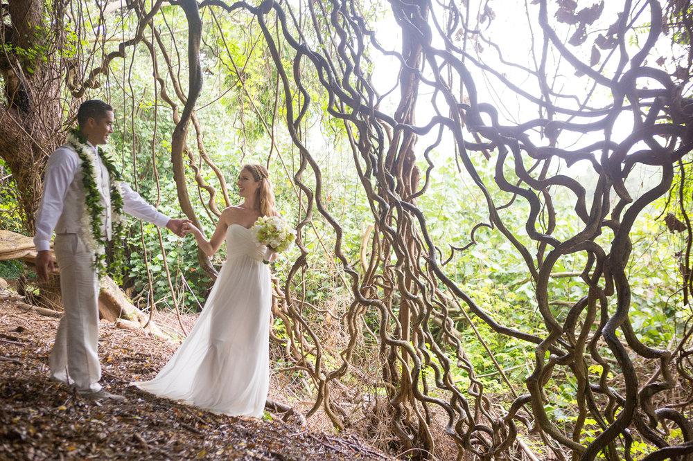 Wedding in Vine Trees in South Kauai -  Hawaii Tourism Authority (HTA) / Tor Johnson