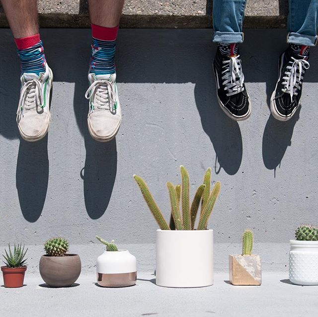 Our first campus cactus photo shoot on @tuftsuniversity campus. Thanks to @loyalsupplyco and Tufts intern team @averyspratt and @wwmairs. - One more step toward improving campus life one cactus at a time.