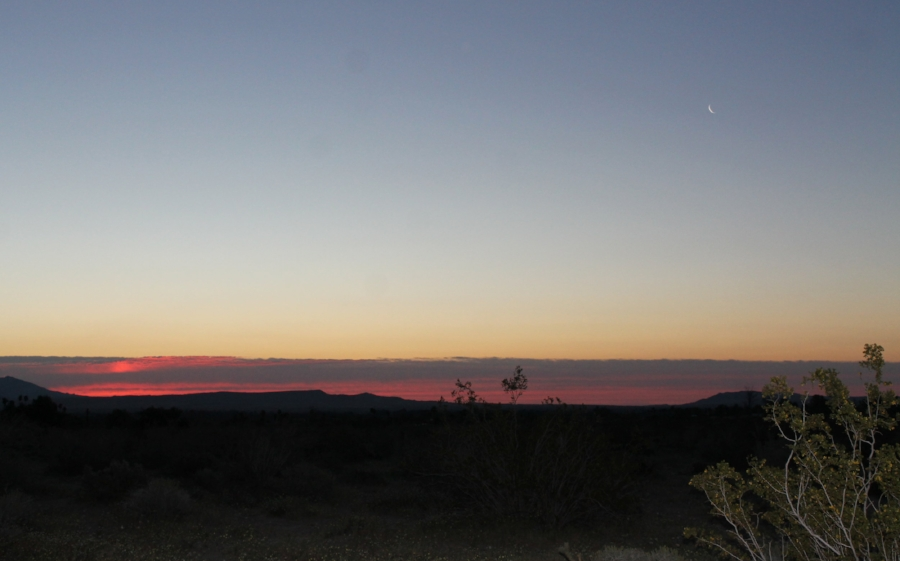 Good night moon. Good morning, Anza Borrego.