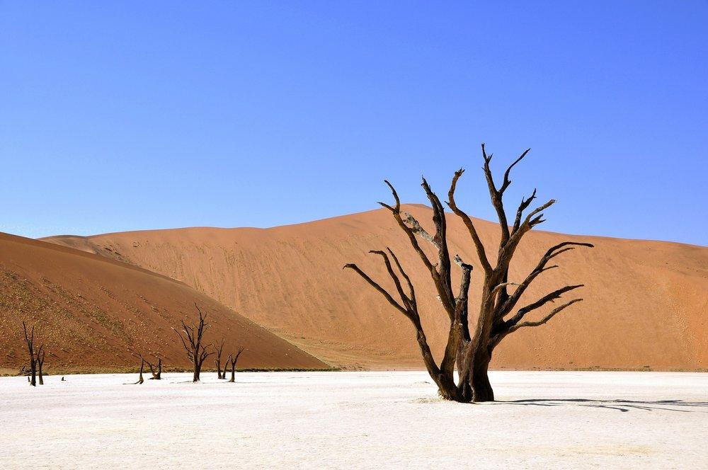 2017 Namibia