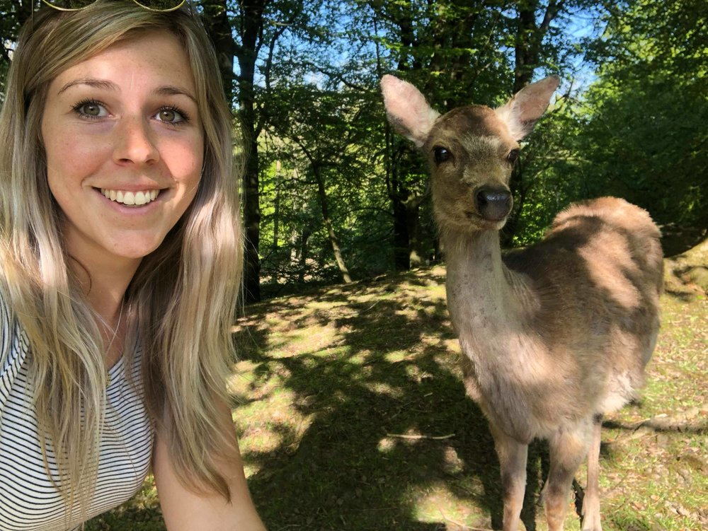 Me and a deer at Marselisborg Dyrehaven
