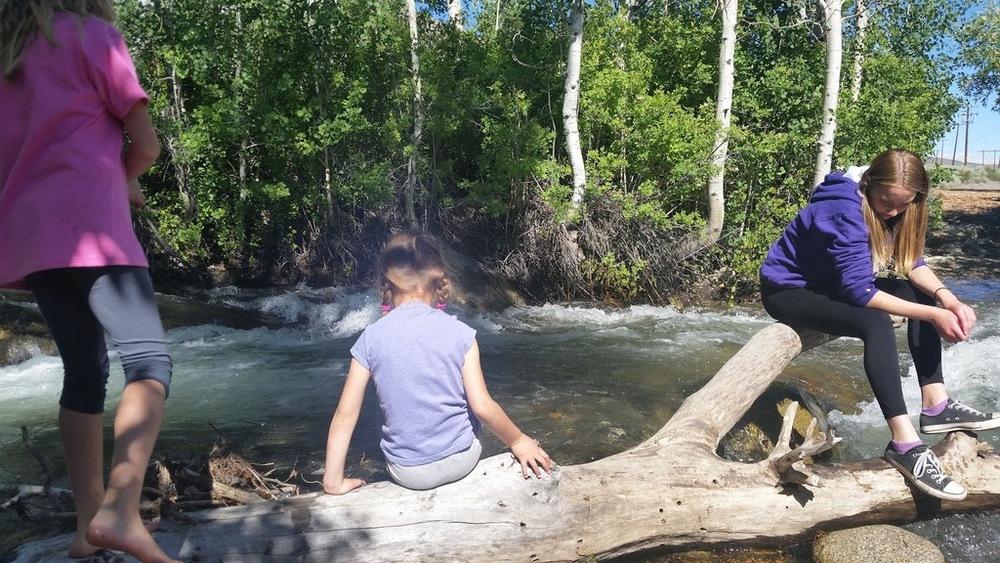 Road Trip to Mammoth Lakes June 2016 (10).jpg