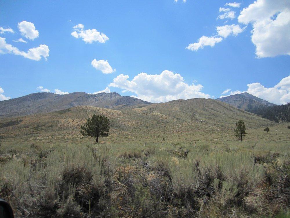 Sherwin Range (31).jpg