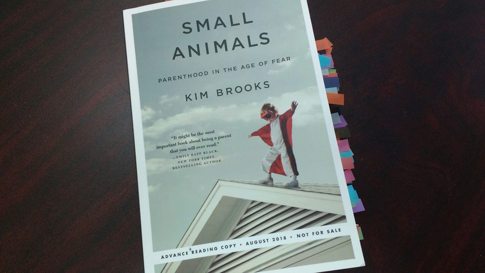 Image description: an image of Kim Brooks' book, Small Animals: Parenthood in the Age of Fear sitting on a desk. Multiple, colored tabs stick out of the side of the book showing marked pages for future reference.