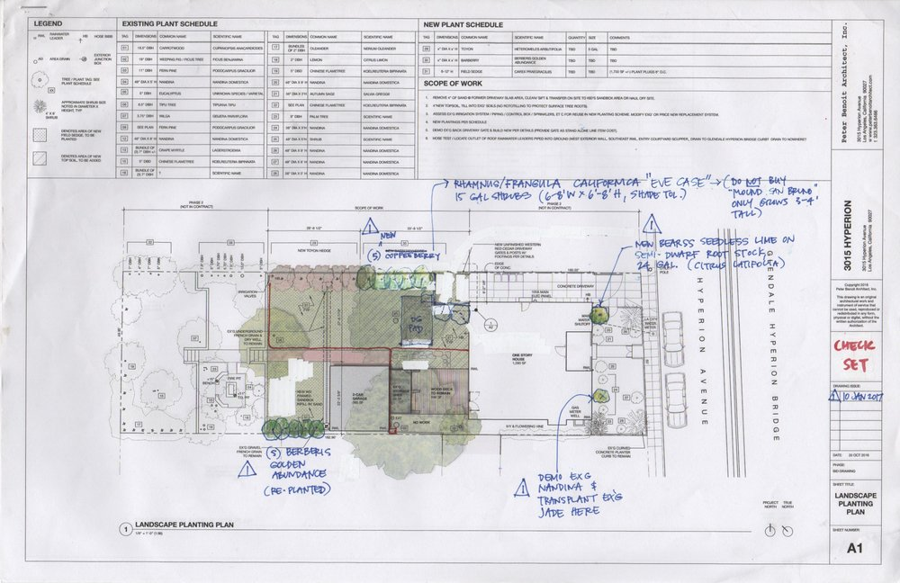 3015 HYPERION (Silver Lake, Los Angeles, CA)-PLANTING PLAN W/ DROUGHT RESISTANT PLANT SCHEDULE