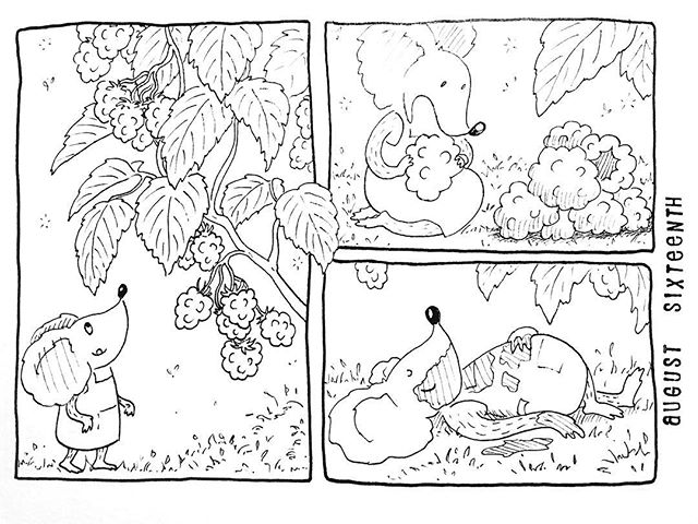 (228/365) The beauty of berries. . Incidentally, I also just posted an illustration about berry-picking over on my main account @holljmck. I guess this summer in Sweden and Norway made its mark on me! 😋 . #mouse #maus #themousetales #dailymice #wildfood #blackberry #brambles #brombeeren #berrypicking #delicious #forestfloor #forest #wald #comic #comics #comicart #comicstrip #drawing #dailydrawing #dailyart #dailydoodle #womenwhodraw #illustration #art #ink #penandink #penandinkdrawing #graphicstorytelling #visualstorytelling #dailystory