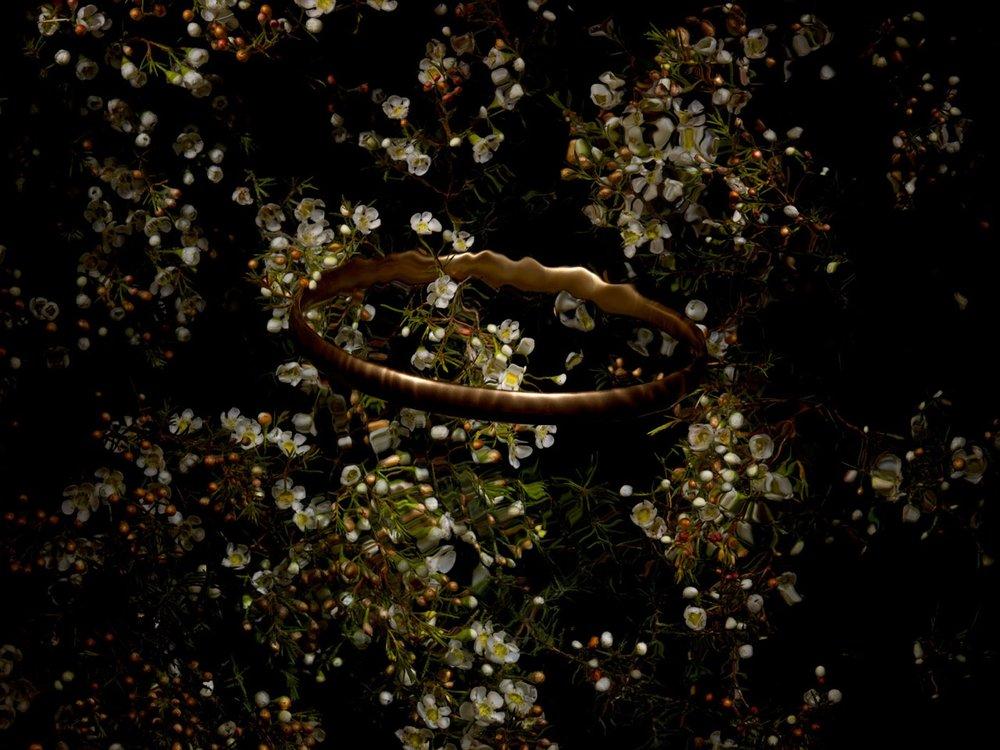 """Fred Ward   The following is placeholder text known as """"lorem ipsum,"""" which is scrambled Latin used by designers to mimic real copy. In sit amet felis malesuada, feugiat purus eget, varius mi. Quisque congue porttitor ullamcorper. In sit amet felis malesuada, feugiat purus eget, varius mi. Vestibulum ante ipsum primis in faucibus orci luctus et ultrices posuere cubilia Curae. Maecenas non leo laoreet, condimentum lorem nec, vulputate massa."""