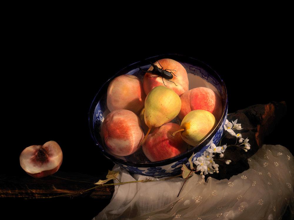 Underwater-Still-Life-Artist-Vanitas-0477-emporers-truth.jpg