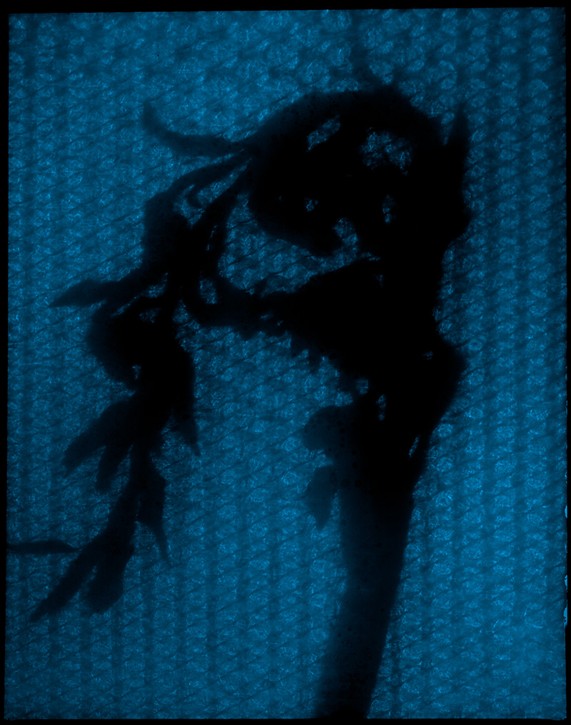 Loosing-Shadows-069-f-1-.jpg