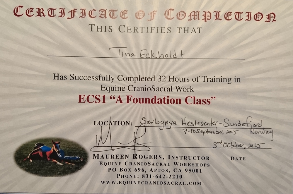 ECS1 diplom.JPG