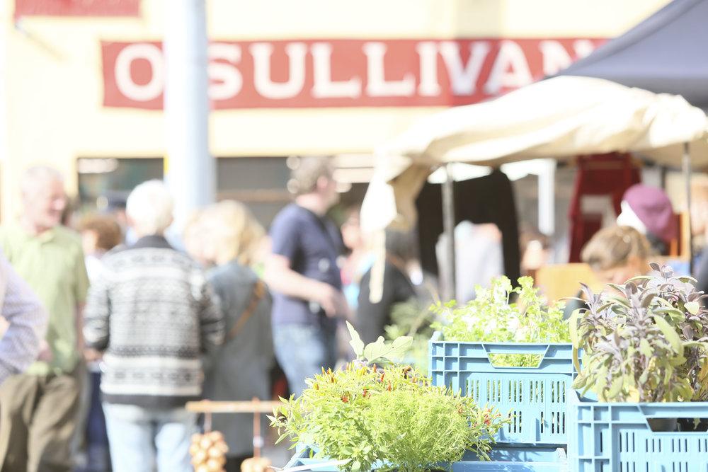 Sun market finale_275.jpg