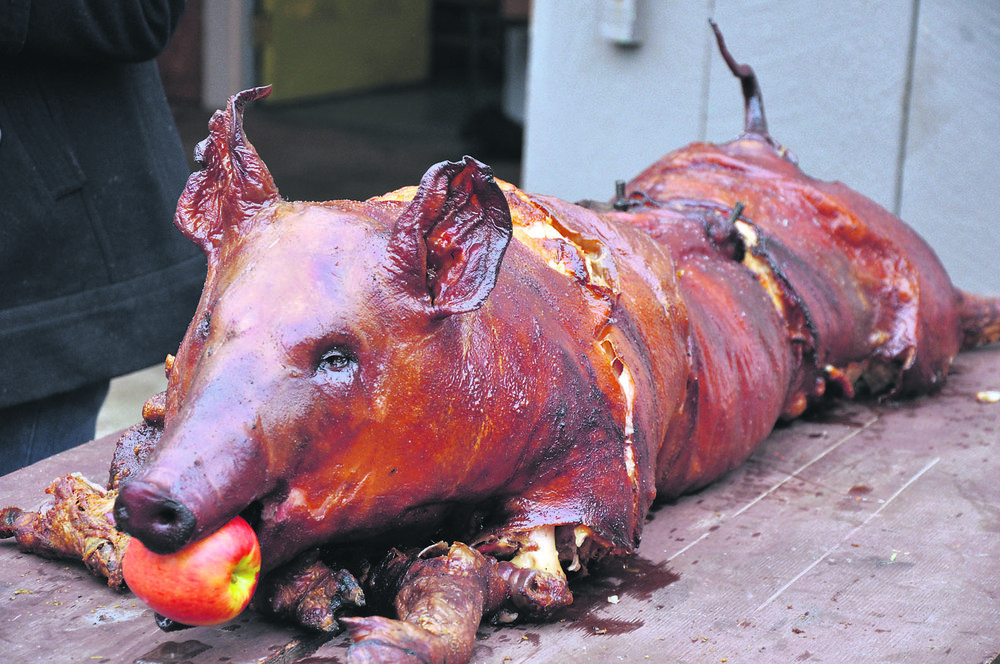 PigSpit1.jpg