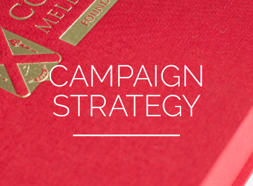 Campaign Strategy