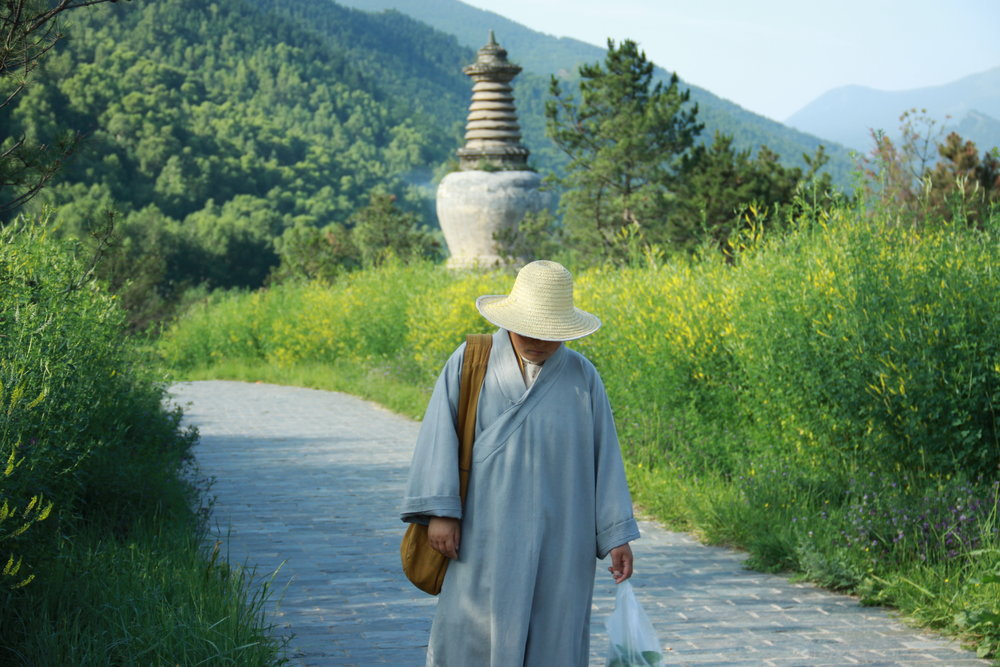 Monk walking on a paved path
