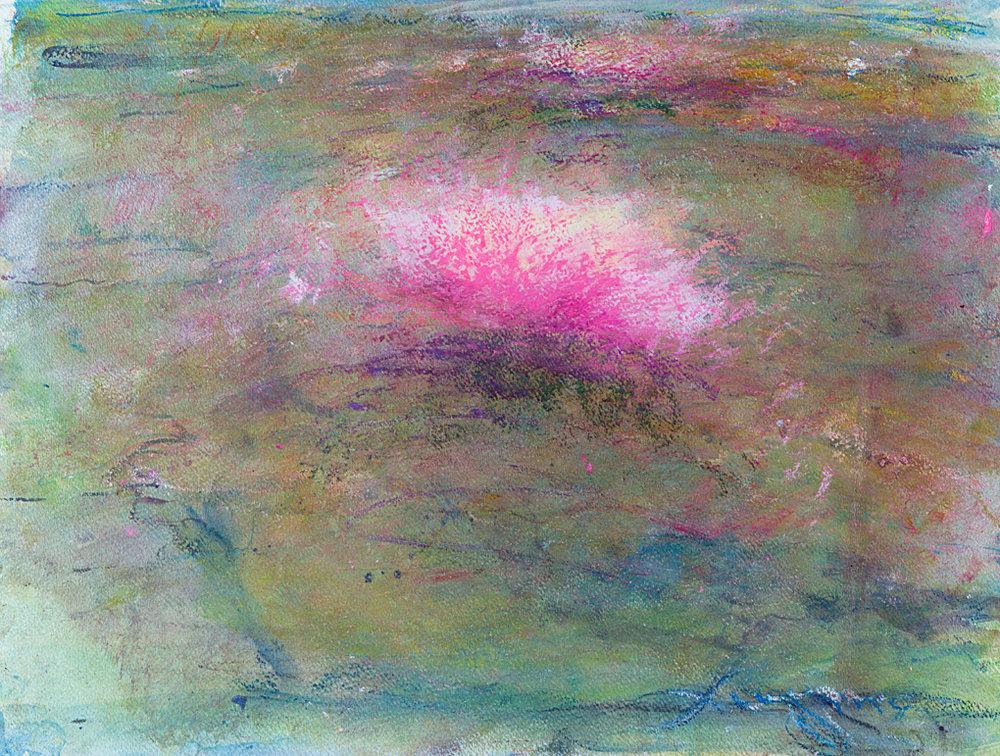swaterlily atlanticare.jpg