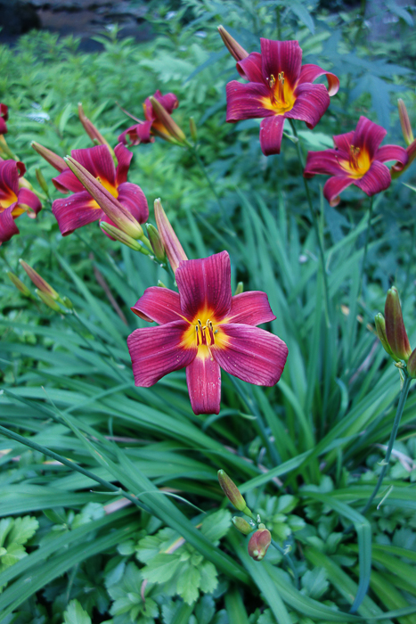 TI floral bouquet-4.jpg