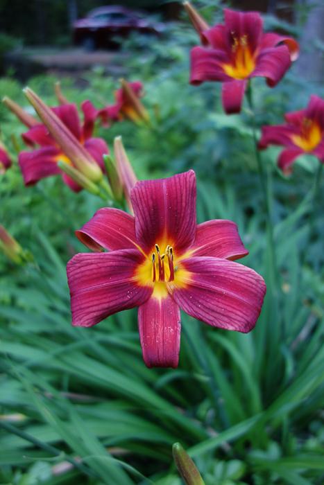 TI floral bouquet-5.jpg