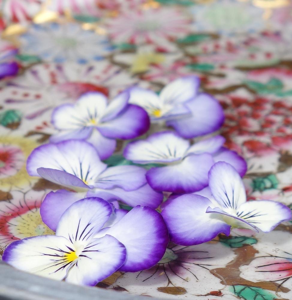 TI - Petals and Blooms-5.jpg