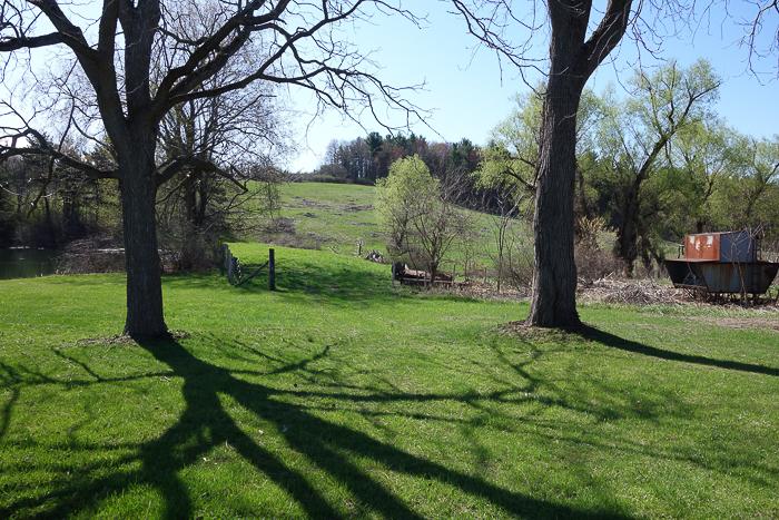 TI - Random Trees and Views-10.jpg