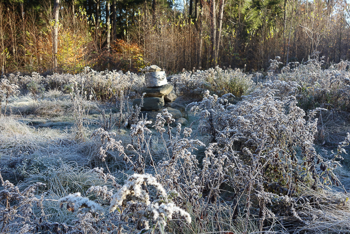 In and Around - First Heavy Frost-15.jpg