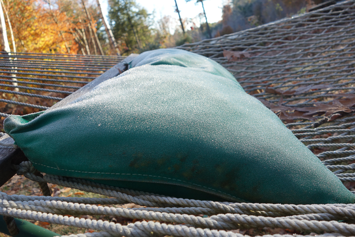 In and Around - First Heavy Frost-4.jpg