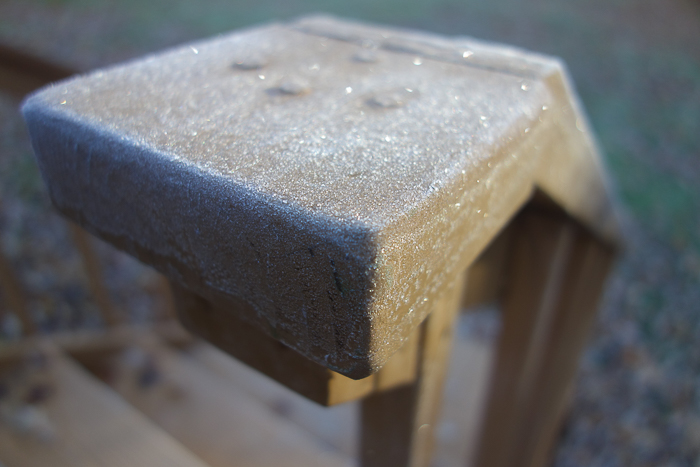 In and Around - First Heavy Frost-2.jpg