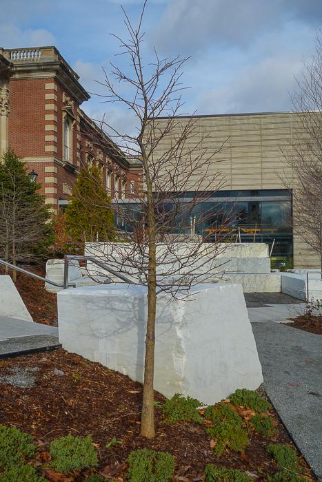 campus marbles-10.jpg
