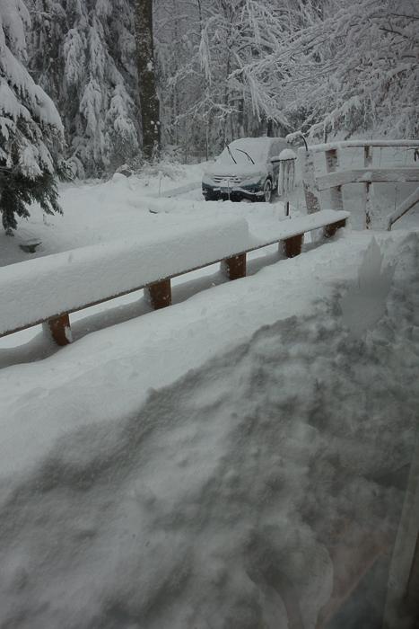 a lot of snow-5.jpg