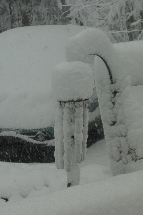 a lot of snow-3.jpg