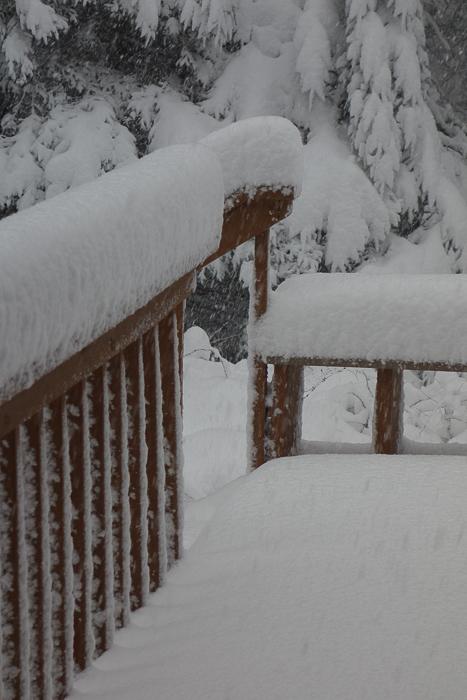 a lot of snow-1.jpg