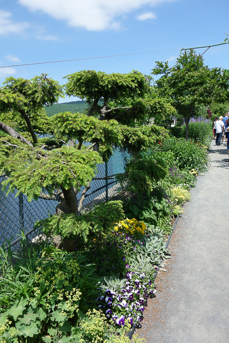 Bridge of Flowers-5.jpg
