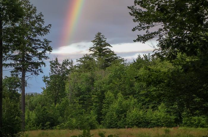 June Rainbow-12.jpg