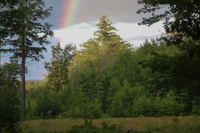 June Rainbow-4.jpg