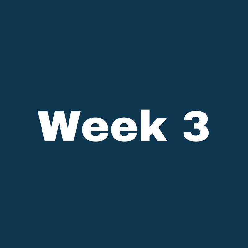 Week 1 (2).png