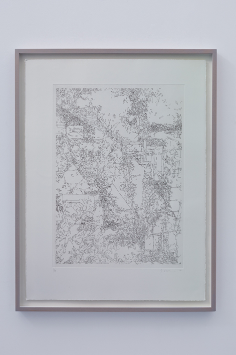 Colognola 002 - Edition Of 7,  57cm X 76cm, Etch Print On 300gsm Somerset Satin, Framed - £365