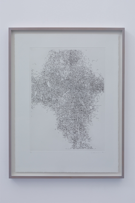 Colognola 003 - Edition Of 7,  57cm X 76cm, Etch Print On 300gsm Somerset Satin, Framed - £365